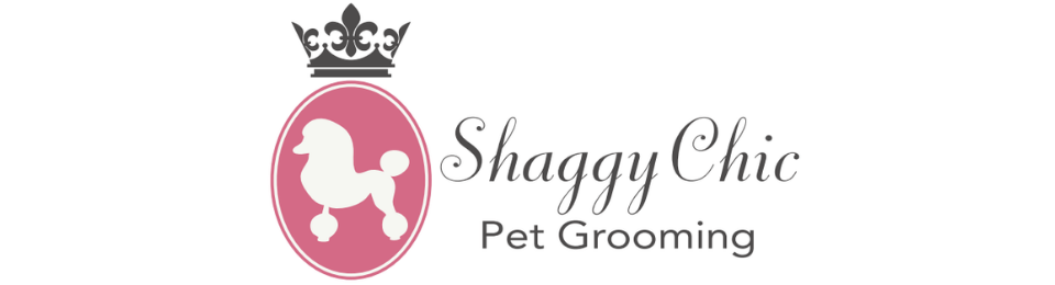 Shaggy Chic Pet Grooming and Daycare